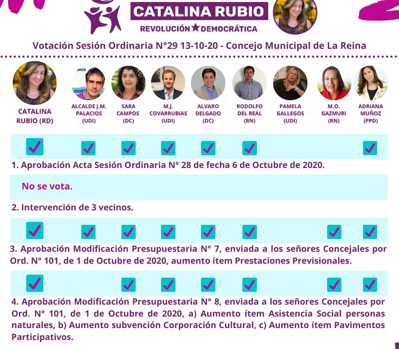 Votación Sesión Ordinaria N°29 13-10-2020
